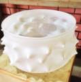 Interiors-bowl-spike